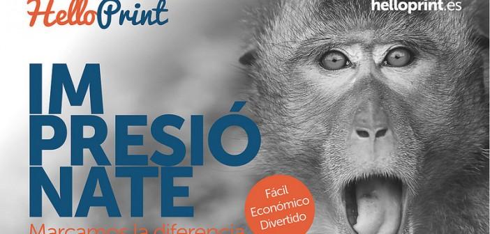 Helloprint desata la locura por la impresión en España